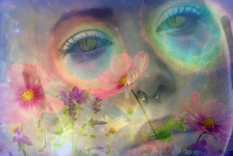 Return Trip: Why Psychedelics Are Back Again