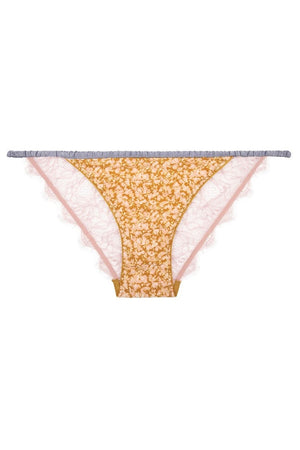 Wild Rose Brief Dots