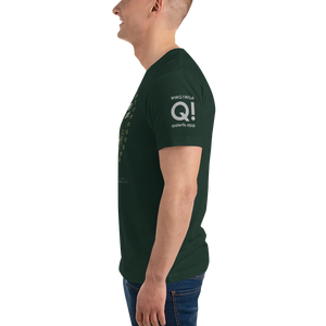 Operation Q | Subdued Sleeve Flag Logo | Unisex Jersey Tee