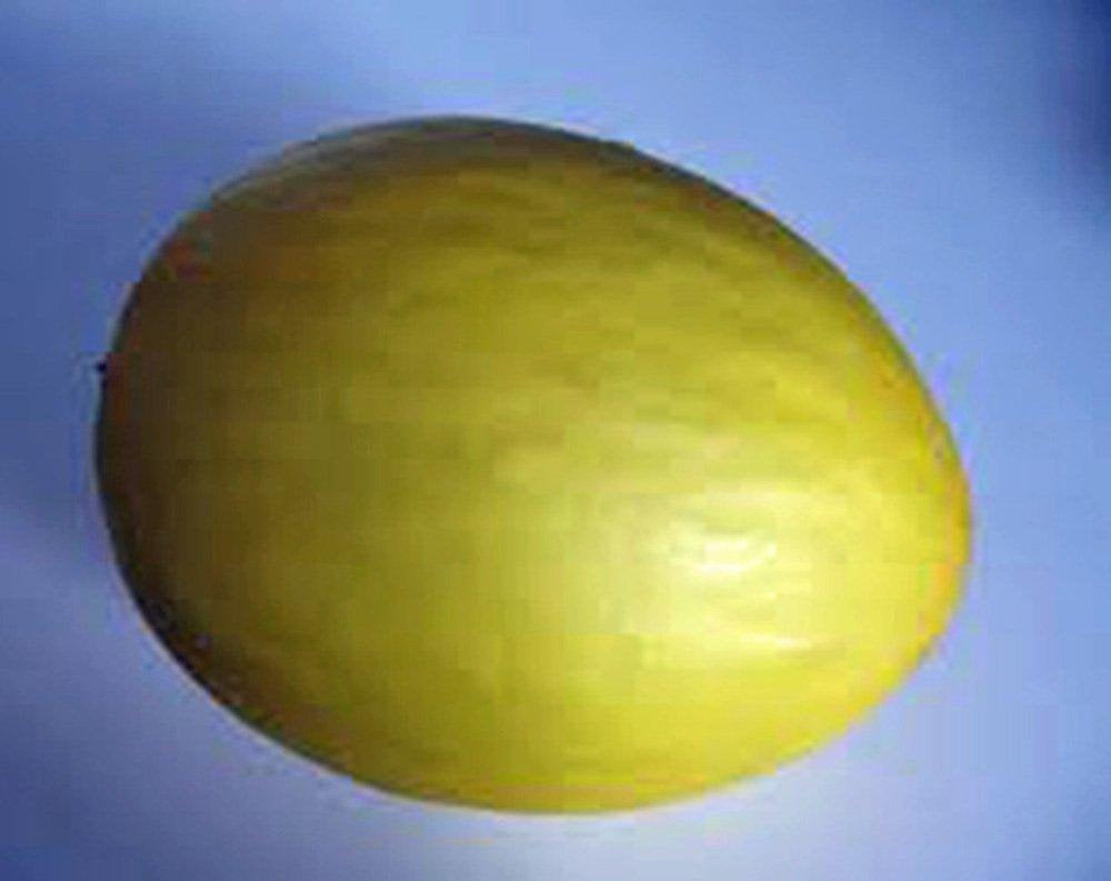 Honey Dew Mellon , Honey Dew Green Sweet, Heirloom, Organic NON-GMO Seeds, delicious