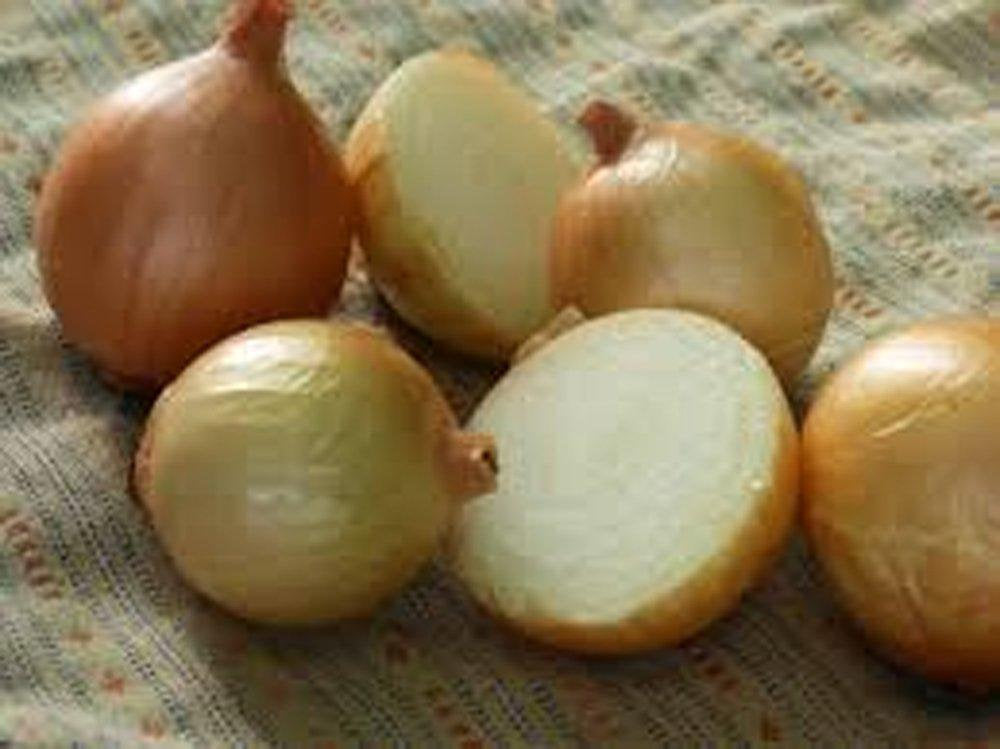 Onion Seeds , Texas Early Grano onion seeds, Heirloom, NON GMO Organic Seeds, Short Day, Vidiala Type