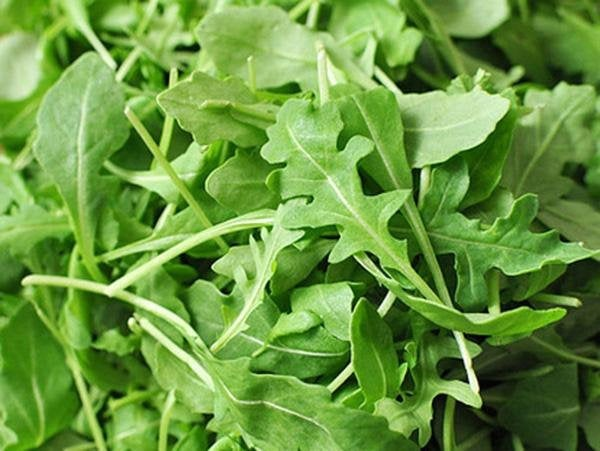ARUGULA ROQUETTE GREENS, heirloom, organic seeds, crisp & delicious in salads