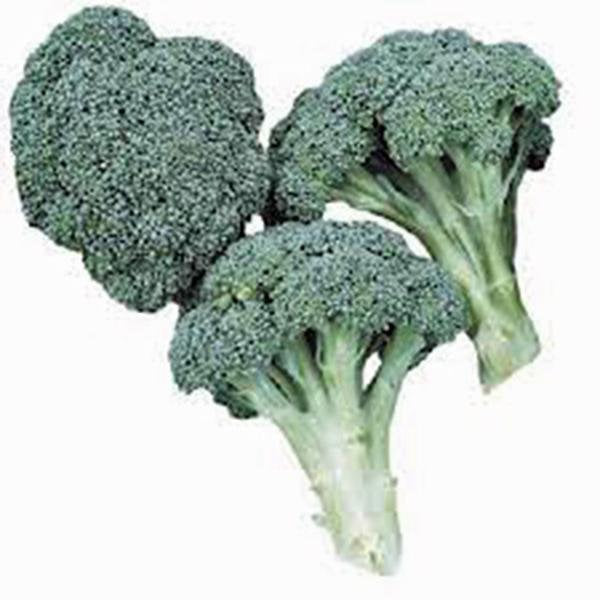 Broccoli, Waltham 29, Heirloom, Organic, Non Gmo  Seeds, Delicious And Healthy