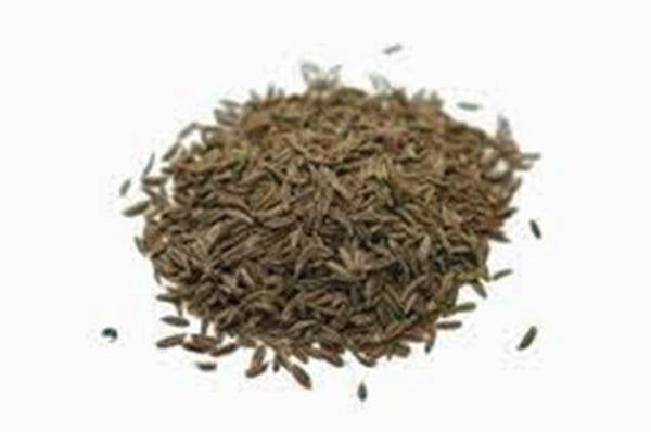 Cumin Seeds, Heirloom, Organic, Non-gmo Seeds, Delicious Seeds, Leaves Great For Salads
