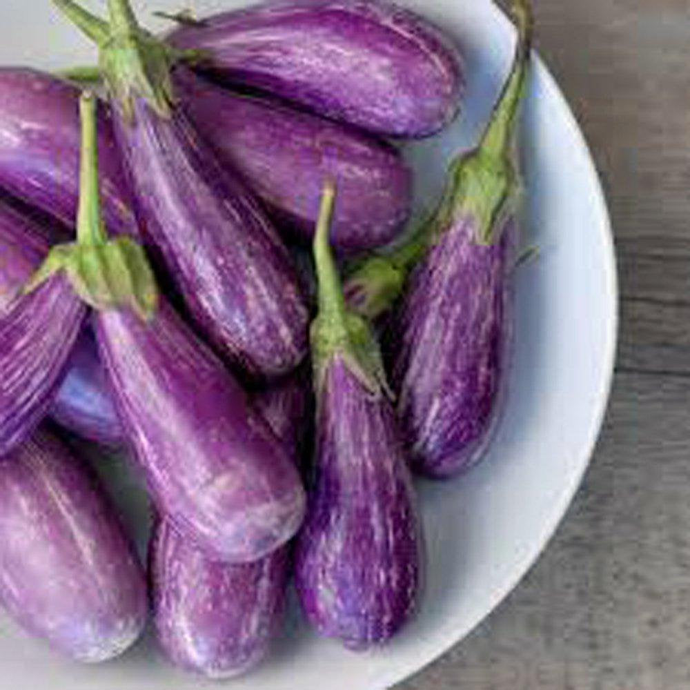 Eggplant Seeds , Long Purple Eggplant seeds, Heirloom, Organic, NON-GMO seeds,