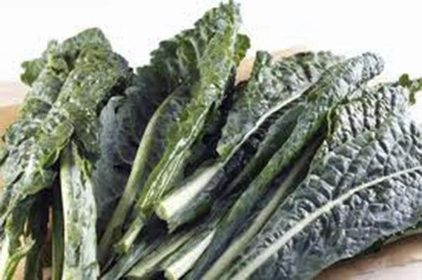Kale, Premier, Organic Non-gmo Seeds, Great For Salads, Cooking, High In Antioxidant
