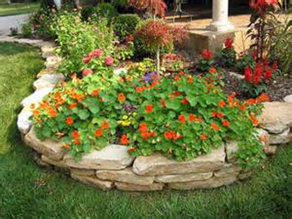 Nasturtium Seeds , Nasturtium Vesuvias Seeds, seeds, Organic Newly Harvested-beautiful Flower