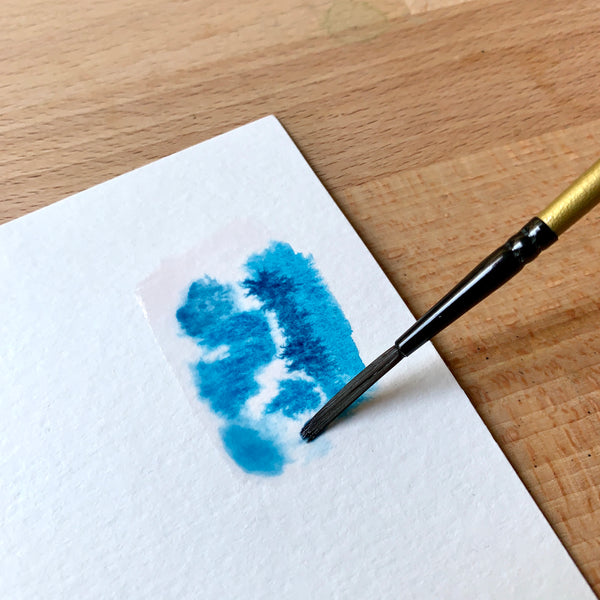 Close up of brush filled with blue paint on paper