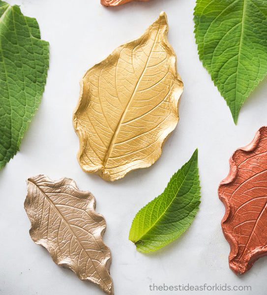 Flaylay image of gold, orange and green leaves on a white table