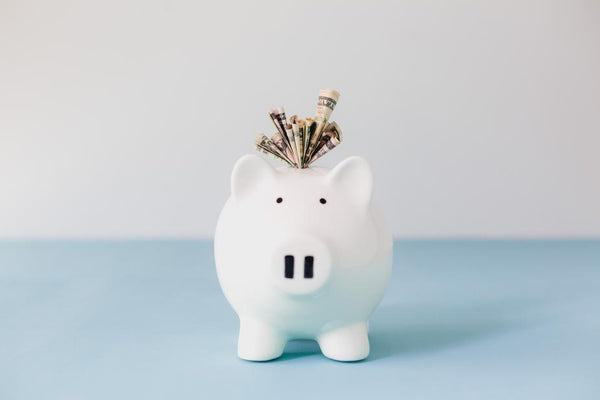 White and blue background with white piggy bank in foreground and money coming out