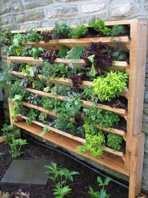 Grow more in less space -Vertical Gardens