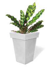 Load image into Gallery viewer, Large Frustum Shaped Non-LED Planter