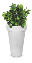 Load image into Gallery viewer, Round Tapered Non-LED Planter- White