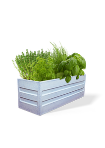 Rectangular Eco Planter-White