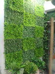 Artificial Vertical Garden With Mix Green Panels