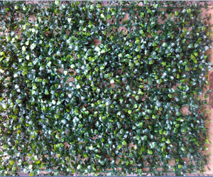 Artificial Plant Panels With Very Small Dark Green Leaves  - 50 CM x 50 CM