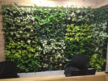Load image into Gallery viewer, Biofelt Natural Vertical Garden System (In Sqft)
