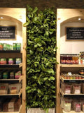Biofelt Natural Vertical Garden System (In Sqft)