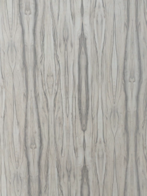 RF-1451 Cream Exotica HPL Cladding