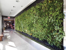 Load image into Gallery viewer, Pp Pot Natural Vertical Garden System (In Sqft)