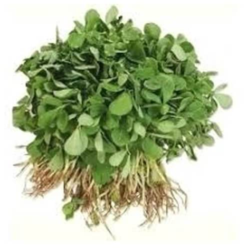 Methi -  Bunch