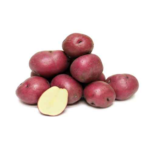 Potato Red Loose