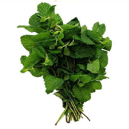 Fresh Mint - 1 Bunch