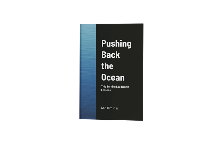 Pushing Back the Ocean - Paperback Book