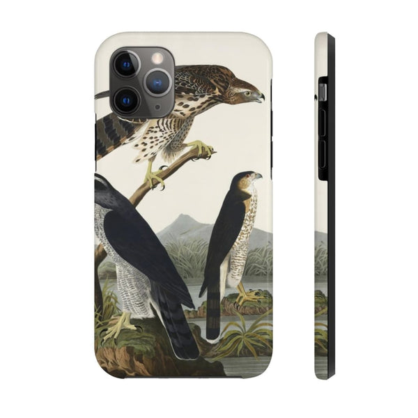 Goshawk and Stanley Hawk from Birds of America (1827) by John James Audubon Phone Cases - The UnSpace