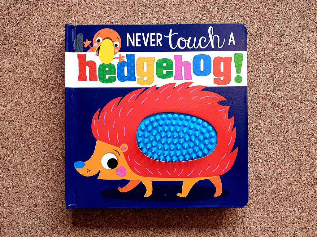 Never touch a hedgehog!