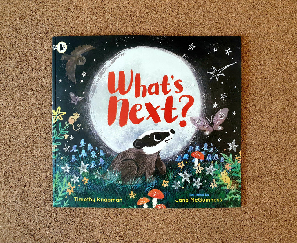 What's next? by Timothy Knapman and Jane McGuinness