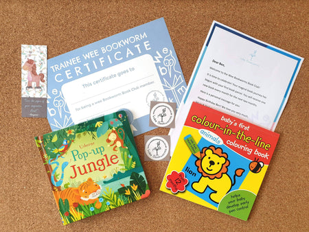 Toddler Book Gift 1-3 years