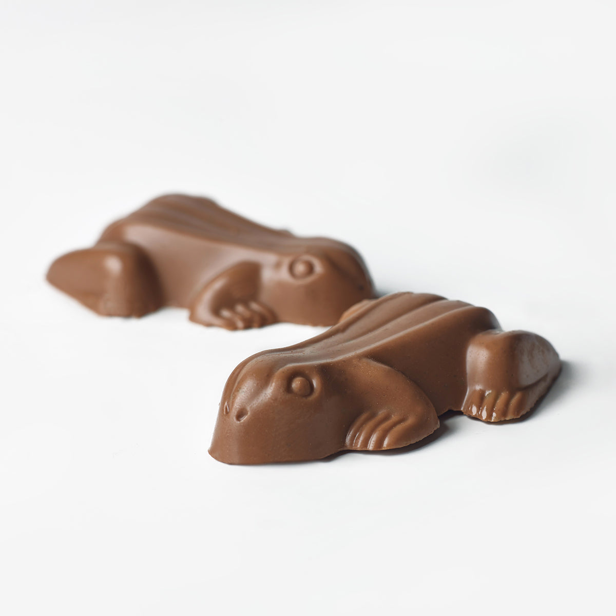Choc Frogs | The Confectionery House | Australia