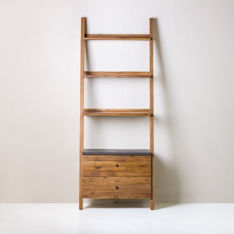 Horizon Ladder Bookshelf - Atmosphere Furniture