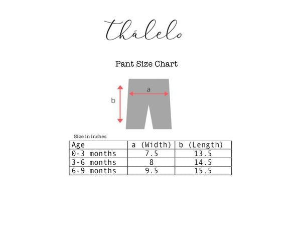 Cotton Half Sleeve T-shirt and Pant Set; Streamer