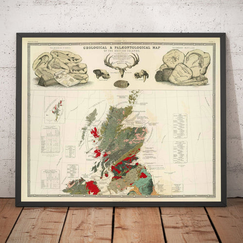 Geological & palaeontological map of British Isles (Scotland) 1854, by A.K. Johnston and Edward Forbes (16x20 inches)