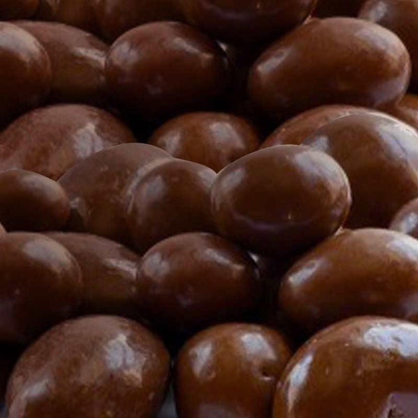 fudgey - Fruit and Nut in Rich Milk Chocolate