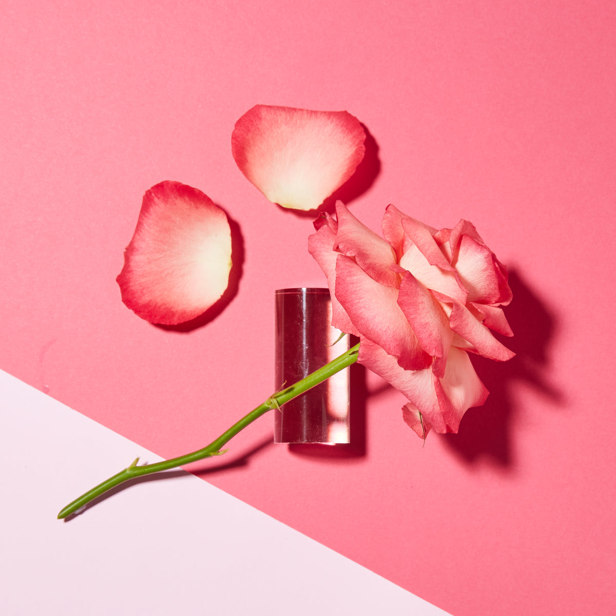Sensitive 1000 Roses Absolute Serum