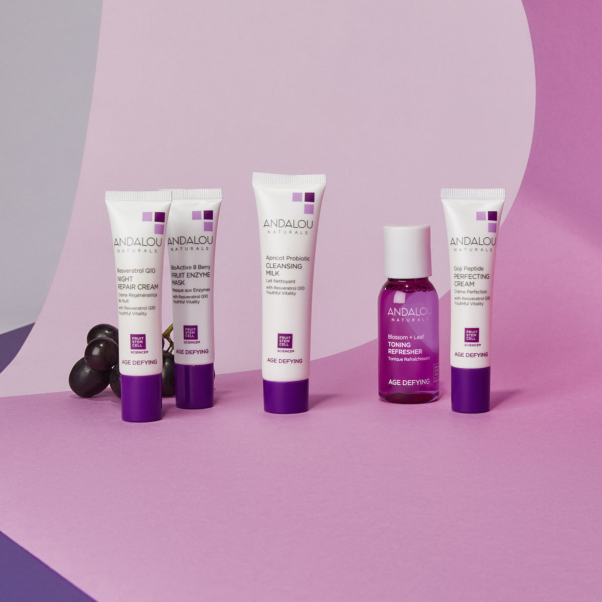 all the products of the Age Defying Get Started Kit