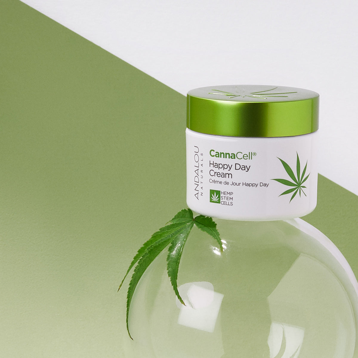 Andalou Naturals CannaCell Happy Day Cream jar with hemp leaf