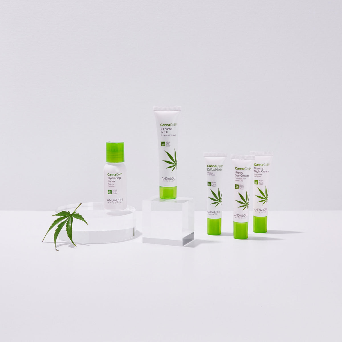 all the products of the Cannacell Get Started Kit with a hemp leaf