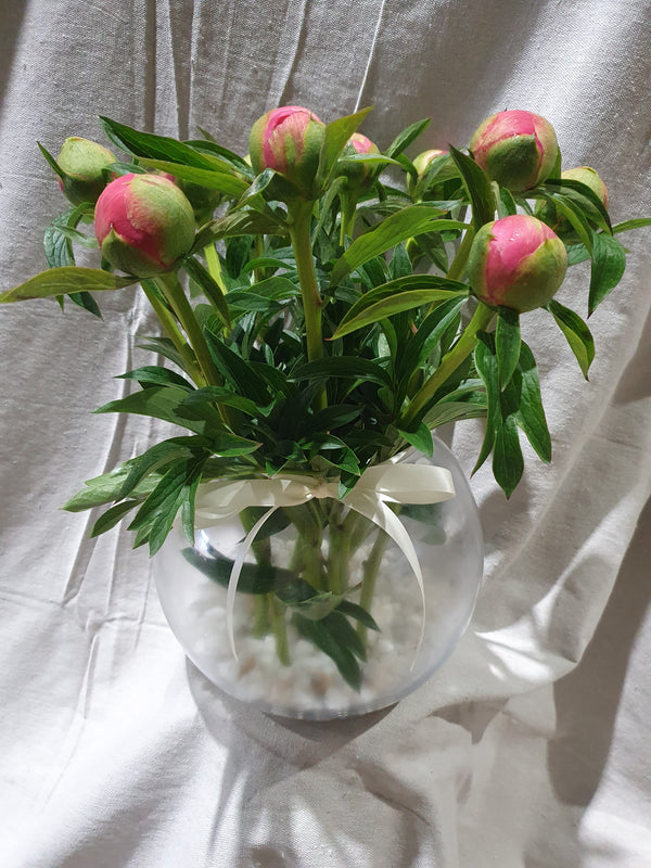 Peonies & large fish bowl