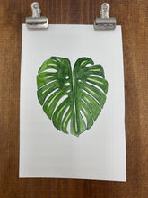 Load image into Gallery viewer, Original watercolor painting - Monstera deliciosa