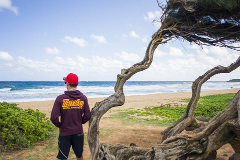 kealia beach, kauai, east coast, beach, vacation, ryder guest, tamba surf company