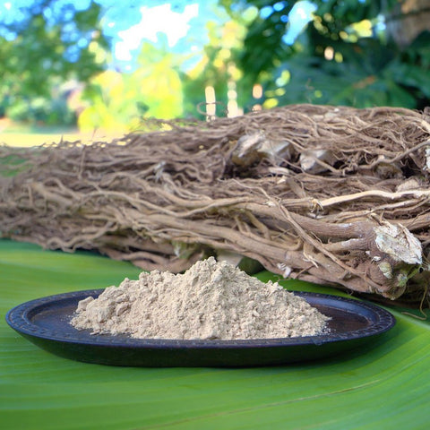 KAVA+ROOT+AND+GRINDED