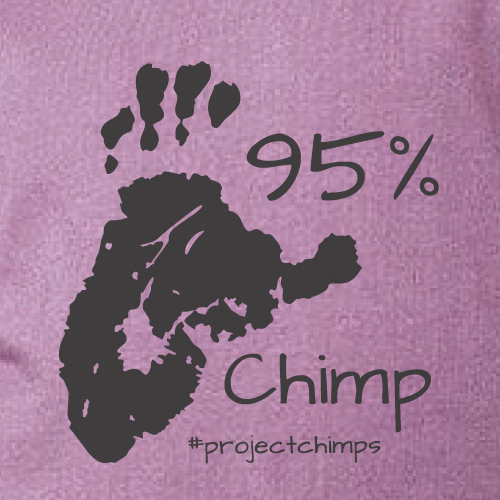 Project Chimps 95% Toddler Tee in Eggplant