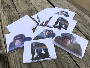 Project Chimps Notecard Set