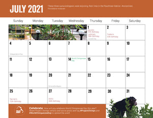 Project Chimps 2021 Calendar