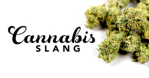 Slang Used for Cannabis