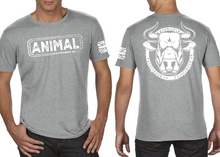 Load image into Gallery viewer, ANIMAL (Bull) Men's T-Shirt - Heather Grey